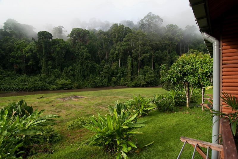 R�no v Danum Valley